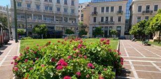 Λουλούδια Αθήνα