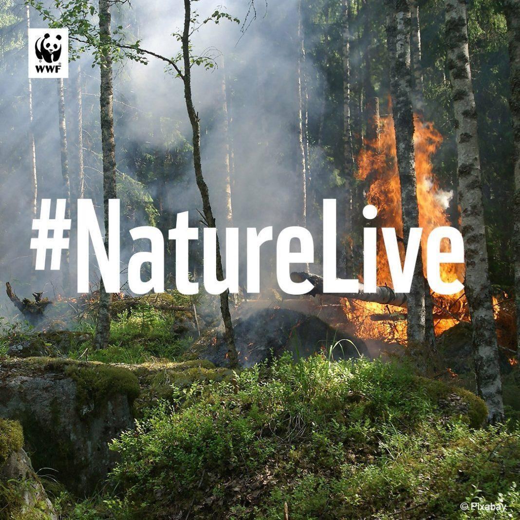 Nature live