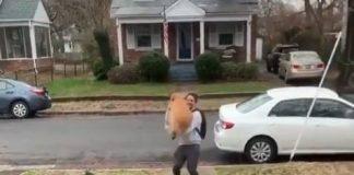 Βίντεο με σκύλους