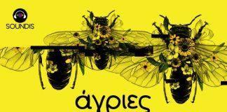 Άγριες Μέλισσες